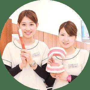 歯の健康ノート